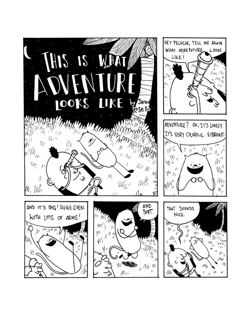 This Is What Adventure Looks Like - Page 1